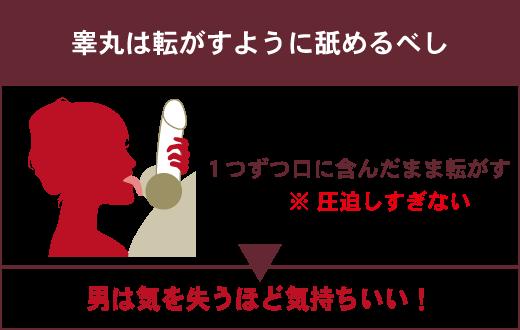 睾丸は転がるように舐めるべし 1つずつ口に含んだまま転がす ※圧迫しすぎない ▶男は気を失うほど気持ちいい!