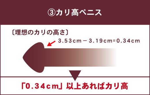【女性が理想とするペニスの特徴③】カリ高ペニス 理想のカリの高さは0.34㎝ ▶「0.34㎝」以上あればカリ高