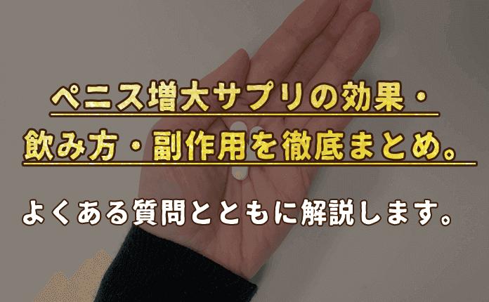 副作用 サプリ ぺ 増大 ニス
