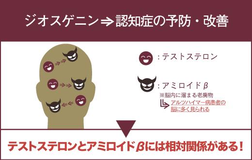 ジオスゲニンは、認知症の予防・改善効果が期待できる。